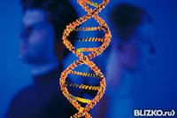 ДНК тест на материнство